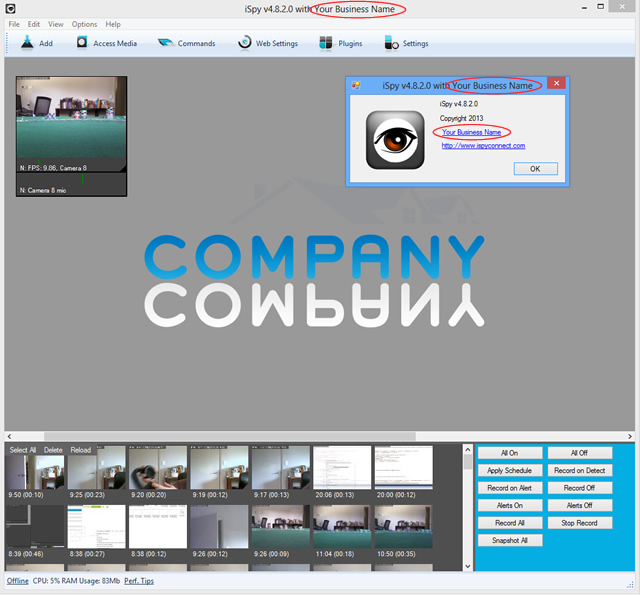 Customised company logo, title bar and about box
